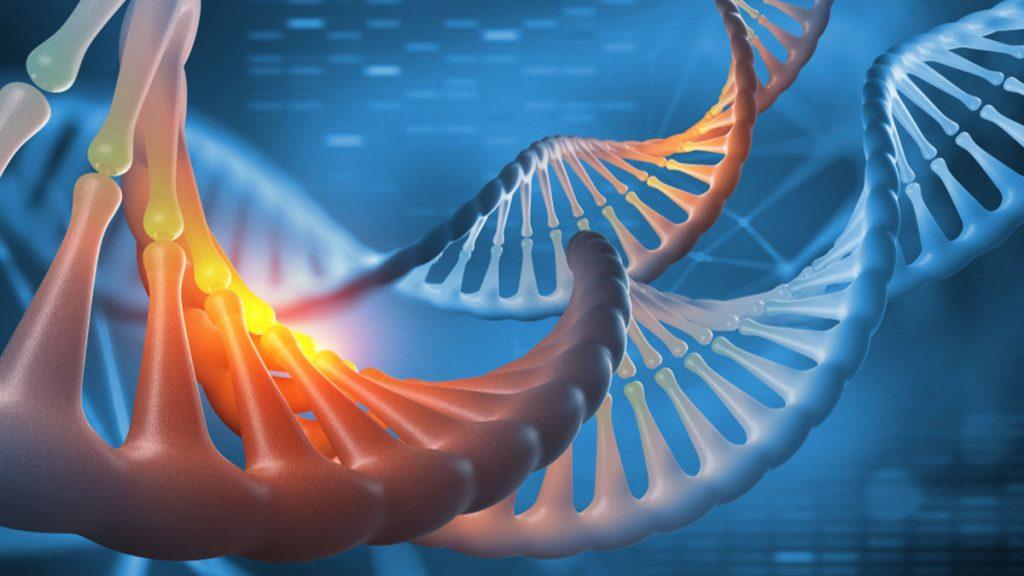 Biyoteknolojide genetik veriler Blockchain ile paylaşılacak