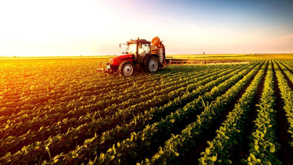 Gıda Dünyasına Blockchain Etkisi