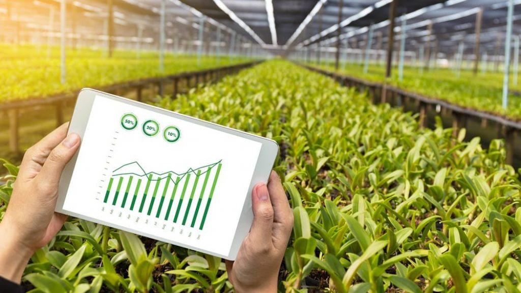 Malezya'da tarım ürünlerini takip etmek için Blockchain kullanılacak