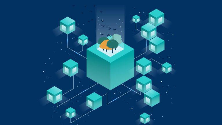 Blokzinciri ve Birlikte Çalışabilirlik (Interoperability)